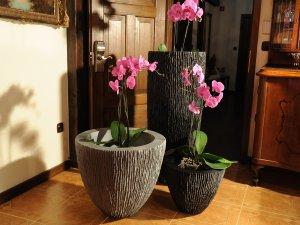 Luksozni-saksii-za-cvetq-orhidei-za-hoteli