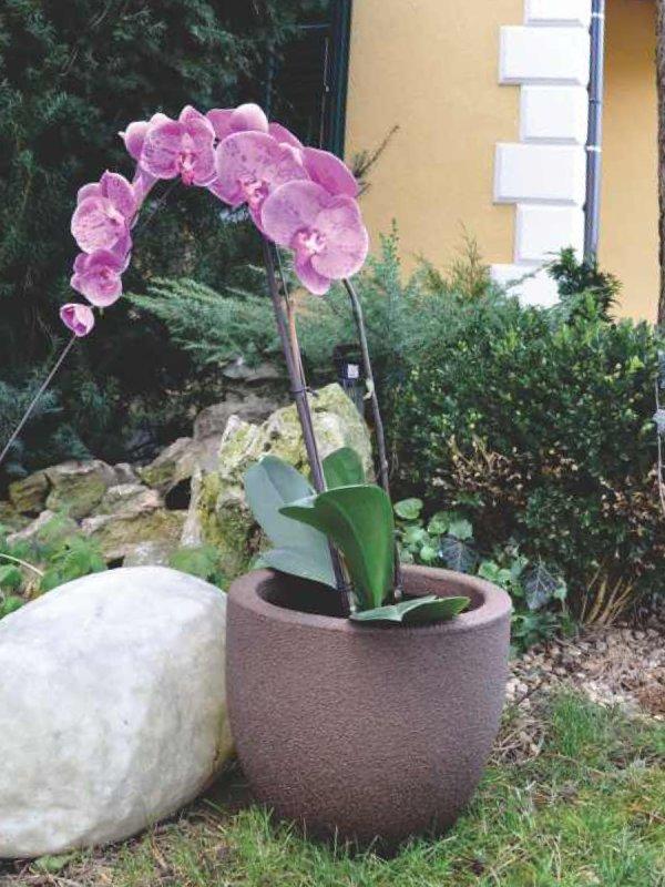 kashpi-i-saksii-za-cvetya-i-orhidei
