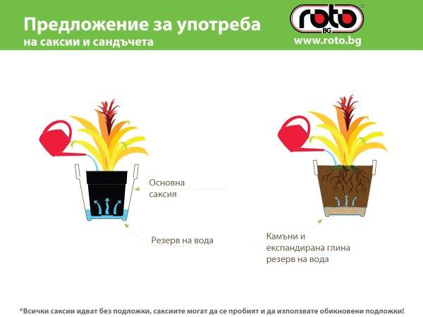 saksii i sandcheta roto upotreba (1)