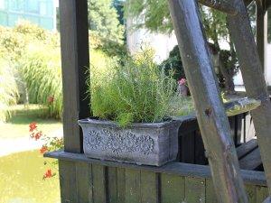 декоративни сандъчета за цветя за градината и балкона