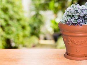 Луксозни и елегантни саксии за цветя с подложка - Онлайн магазин за градината