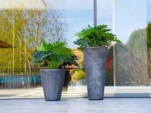 Плетени кашпи и високи саксии за цветя - Озеленяване