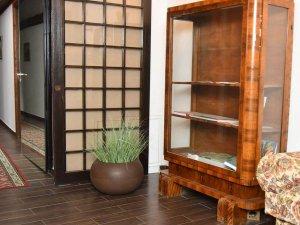 Интериорни кашпи дизайн и обзавеждане на офиси и хотели